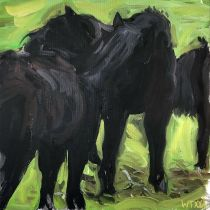 Ponies Stepelo